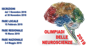 Logo-Olimpiadi-delle-Neuroscienze-2019-con-date